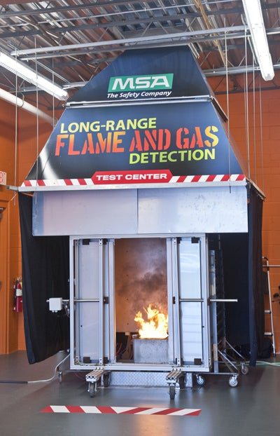 Fixed gas and flame detection