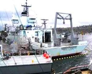 new ship crane