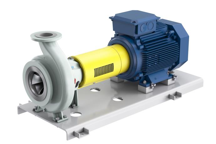 SNS process pumps